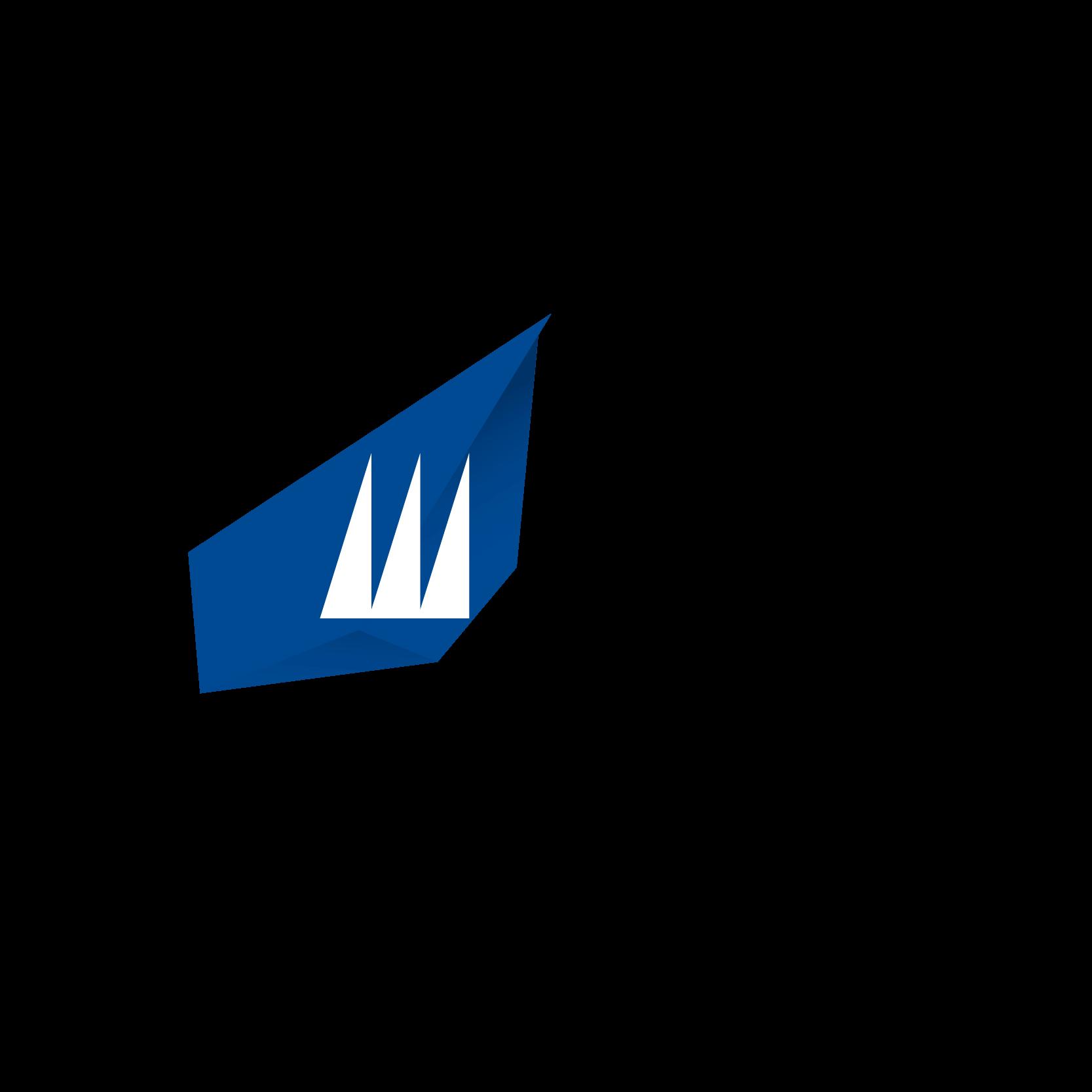 HS_logo5